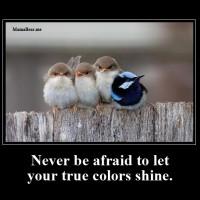 Never be afraid…